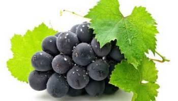 Vinogradnaja-dieta-dlja-pohudenija-recepty