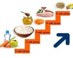 Dieta-lesenka-otzyvy